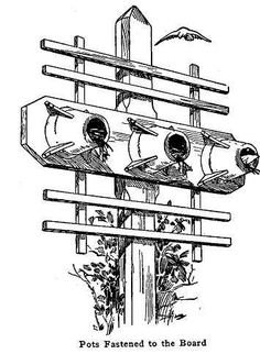 Use flower pots mounted to trellis as bird house.