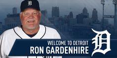 Detroit Sports, Detroit Tigers, Sports Teams, Tigers Baseball, Detroit Red Wings, Lions, Twitter, Lion