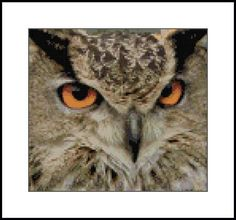 Owl Cross Stitch  Winter Owl    Owl pattern here    Owl clip art  This counted cross stitch pattern of owls was created from clipart  copyri...
