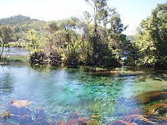 source d'eau-Golden Bay, New-Zeland