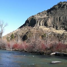 """My novel """"Promise"""" leads to an awareness of this. Yakima River in the canyon. In warm weather, watch out for rattlesnakes."""