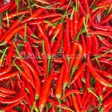 Hot Chilli Peppers wall mural