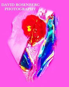 Flower on Ice; original abstract photography by David Rosenberg; by ArtBySarahHinnant on Etsy