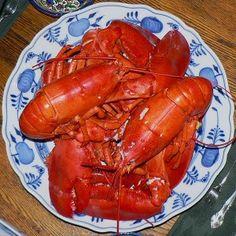 Maine Lobster. Credit: Wikimedia CC