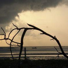 Praia paripueira