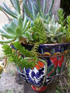Talavera bursting with color !