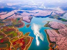 China Looks Magical Covered in Spring Flowers – See for Yourself in This Drone Footage Guiyang, Colorful Flowers, Spring Flowers, Cherry Blooms, Cherry Blossom Japan, Impressive Image, Sakura, Spring Blossom, Aerial Photography