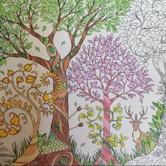 the enchanted forest coloring book - Google Search
