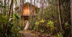 This tropical tiny house in Hawaii cost to build, less than a new car! I'M SOLD! Build Your Own Shed, Cost To Build, Hawaii Homes, Backyard Sheds, Tiny House Cabin, Shed Storage, Shed Plans, Home Renovation, Outdoor Spaces