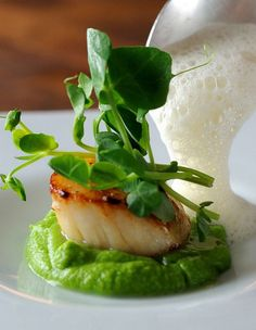This amazing scallop recipe from Chris Horridge elevates a simple dish into something truly memorable. The combination of sweet scallops, peas, crunchy pea shoots and piquant cumin foam is sure to wow at any dinner party Fish Recipes, Seafood Recipes, Gourmet Recipes, Cooking Recipes, Healthy Recipes, Seafood Appetizers, Pureed Recipes, Fancy Recipes, Clam Recipes