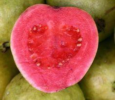 Image from http://4.bp.blogspot.com/_OfYYlOGGnDk/S-F5whkaGbI/AAAAAAAABWU/SMUh7jUpRO4/s1600/guava.jpg.
