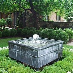 Row of rounded box hedge   Zinc fountain Detroit Garden Works
