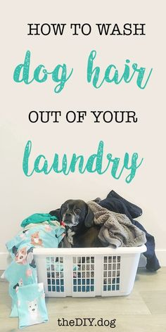 How to Wash Dog Hair Out Of Clothes and Blankets Waschen von Hundehaaren aus Kleidung und Decken - Kol's Notes House Cleaning Tips, Diy Cleaning Products, Cleaning Hacks, Cleaning Dog Hair, Homemade Products, Spring Cleaning, Dog Hair Removal, Dog Smells, Cat Dog