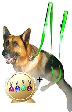 2 Handles Dog Leash  8FT 2Inch Green Dual Handle Dog Leash  FREE Bonus Dog Tag  Dog Leashes For Large Dogs Heavy Duty  Leash For Dogs Who Pull  Dog Leash Large Heavy Duty -- Learn more by visiting the image link.