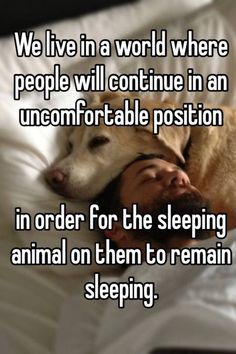 """Someone posted a whisper, which reads """"We live in a world where people will continue in an uncomfortable position in order for the sleeping animal on them to remain sleeping. I Love Dogs, Puppy Love, Cute Dogs, Big Dogs, Animals And Pets, Baby Animals, Diy Pet, Sleeping Animals, Sleeping Dogs"""