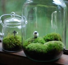 tiny ireland in a jar - Google Search