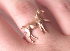 Horse ring for all you horse lovers out there
