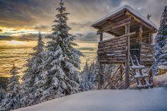 Curiosidades sobre o inverno