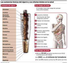 ... Las sustancias tóxicas del cigarro y sus efectos letales en la salud.