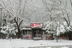 selcuk restaurant/bursa/turkey