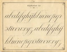 French penmanship: lower case letters.