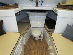 unique toilet idea