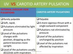 internal jugular vs carotid pulsations - Google Search Carotid Artery, Head And Neck, Physics, Study, Positivity, Google Search, Studio, Investigations, Studying