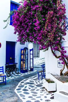 Skiatos by Ira Goleva . - Skiatos by Ira Goleva More - - Wonderful Places, Beautiful Places, Beautiful Streets, The Places Youll Go, Places To Visit, Travel Around The World, Around The Worlds, Santorini Greece, Santorini Honeymoon