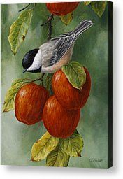 Apple Chickadee Greeting Card 3 Painting by Crista Forest - Apple Chickadee Greeting Card 3 Fine Art Prints and Posters for Sale