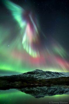 Aurora Burealis by Tommy Eliassen- bucketlist