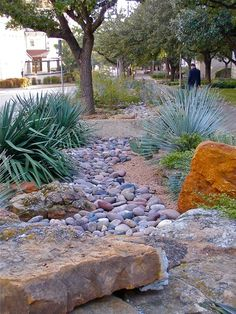 South Texas Landscaping, Front Yard Landscaping, Backyard Patio, Landscaping Ideas, Mulch Landscaping, Modern Backyard, Backyard Ideas, Garden Ideas, Garden Tips