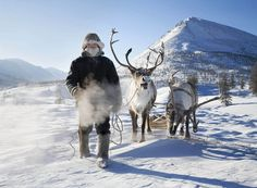 Following the reindeer : evgenia arbugaeva