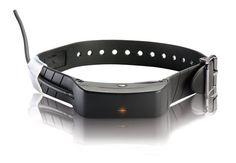 SportDOG TEK Series 1.0 GPS Tracking Collar