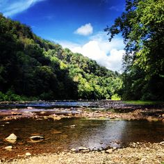 Picture of the Greenbrier River of West Virginia that I took while I was out fly fishing.