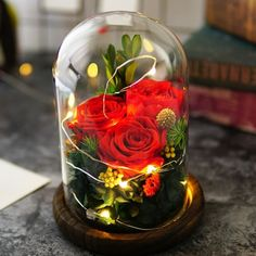 Glass Dome Red Roses / String Fairy Light Gift- Love