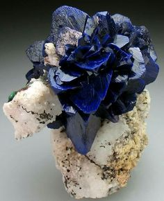 'rose' formed of Azurite blades, on matrix! The Azurite is bright to deep blue and very lustrous, and well crystallised. Azurite roses from Morocco are normally found as floater specimens, and it is rare to see a rose of this quality on matrix. Minerals And Gemstones, Rocks And Minerals, Dame Nature, Rock Collection, Beautiful Rocks, Mineral Stone, Rocks And Gems, Stones And Crystals, Gem Stones