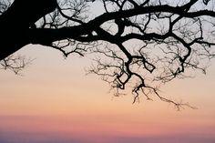 sunset43