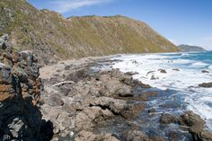 Makara Beach in Wellington, New Zealand presents amazing opportunities to get away from it all and yet be only a short distance from NZ's capital city. Capital City, Landscape Photographers, Landscape Photos, Us Travel, New Zealand, Exploring, Distance, The Good Place, National Parks