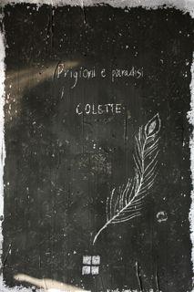 Mariolina Bertini è Fuorisede, su FN: Prigioni e paradisi, di Colette, Del Vecchio editore 2012