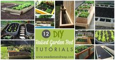 12 DIY Raised Garden Bed Tutorials | Weed 'Em and Reap