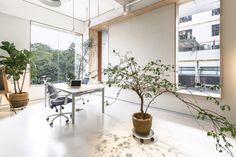 Gallery of Bloom Design Studio / Bloom Design - 1