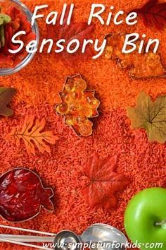 Lots of fun with a simple fall rice sensory bin! A recipe for fall inspired activities with your toddler using items in your kitchen.