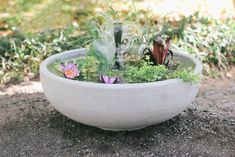 DIY Container Water Garden (Pond in a Pot)   eHow