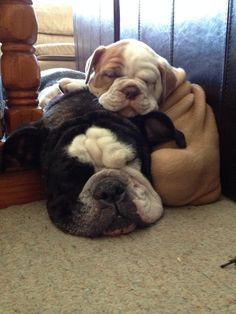 Cuddling makes naptime even better!