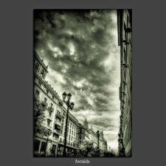 Meridiana claridad (Sofía Serra): Avenida