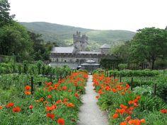6 National Parks of Ireland: Castles, Cliffs, Green Mossy Landscapes [38 PICS]