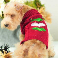 ドッグウェア/赤のセーター♪・・・X'masにもいいね!