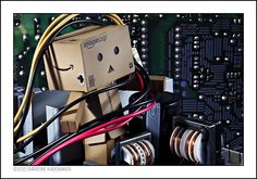 Danbo is really getting caught up in all this computer technology.  I do wish he could fix my computer though as it's been playing up for ages and now we are finally going to buy a new one. Soon I will be able to upload photos and stay on the internet