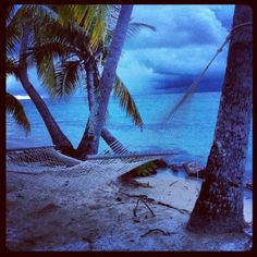 Plantation Island, Fiji. I loved it here. I was obsessed with being in this hammock.