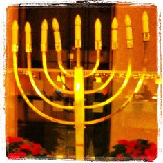 Happy, oily and greasy (first day of) Hanukka! #menorah #Hanukkah #Chanukah #Midtown #MidtownManhattan #hanukkiyya #NYC (at New York Marriott Marquis)  Socializing with members of Exotic Jews at the New York Marriott Marquis, 1535 Broadway, Midtown Manhattan, 24 November 2012. (Photograph by Elyaqim Mosheh Adam.)